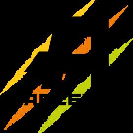 Access Motor Logo