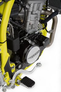 SWM-RS-125 Motor Detail